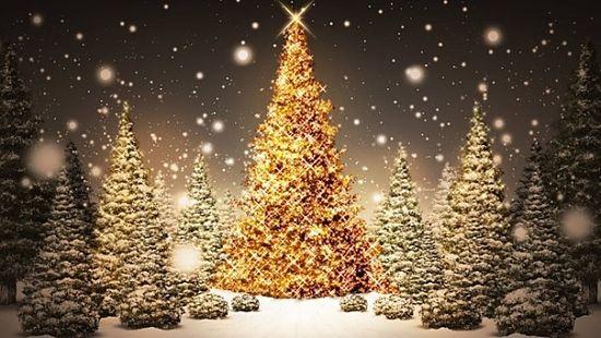 Foto paesaggio natalizio